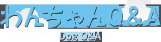 わんちゃんQ&A